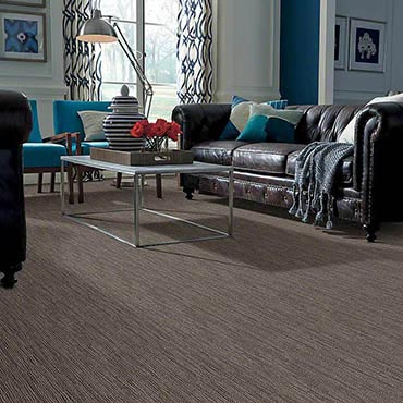 Anso® Nylon Carpet | Gresham, OR